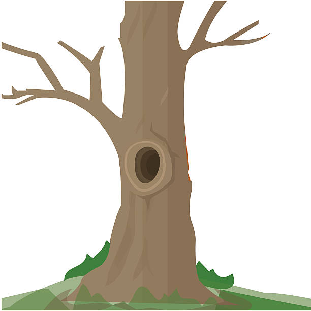 Tree Trunk Clipart Pictures Clip Art, Vector Images ...