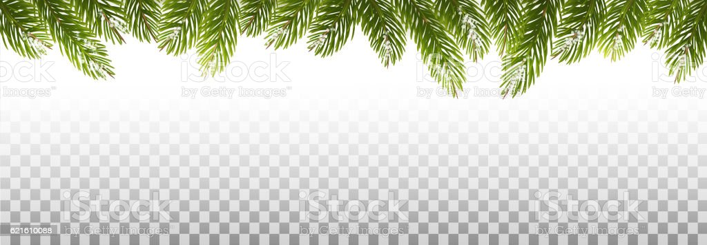 Holiday Christmas Frame With Green Tree Branches on Transparent vector art illustration