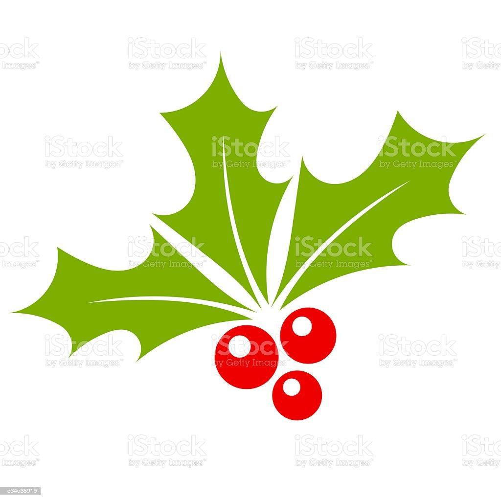 Holly berry vector art illustration