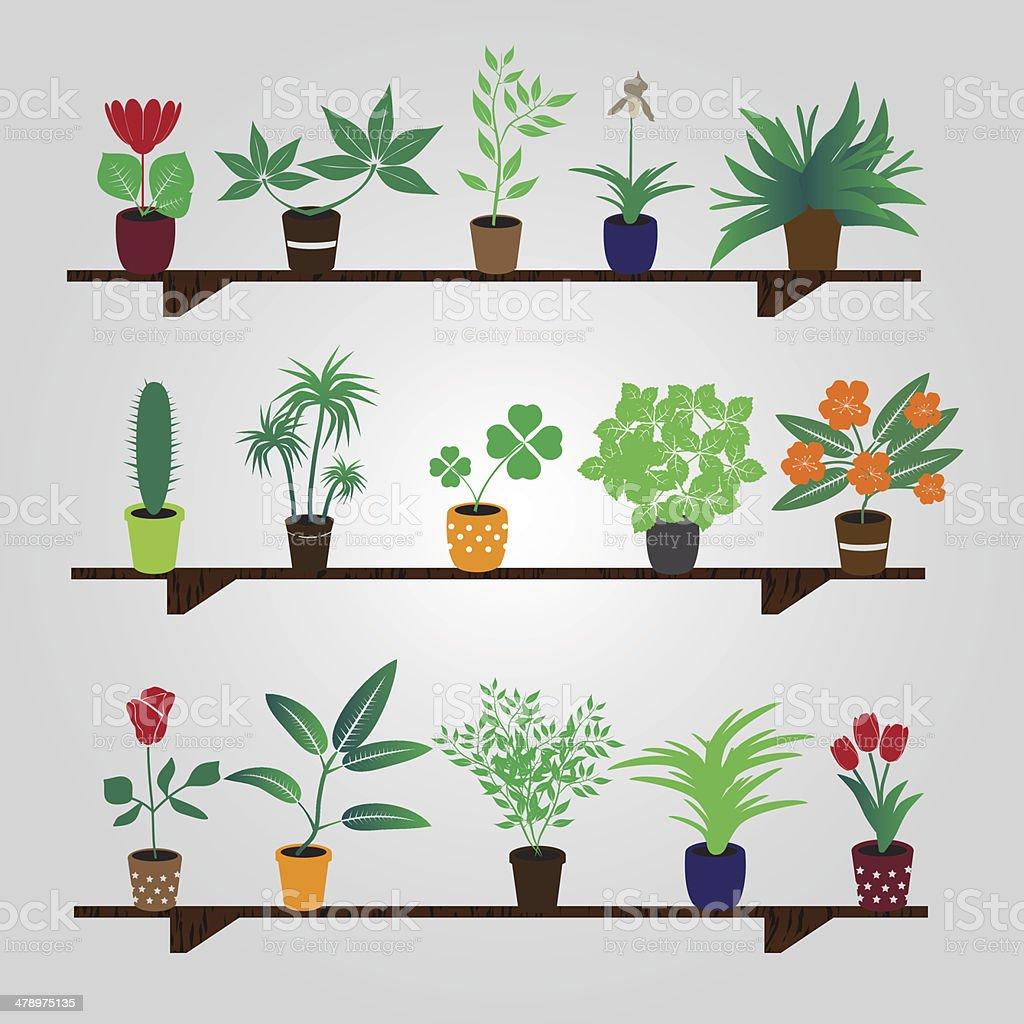 home houseplants and flowers in pot on the shelf eps10 vector art illustration