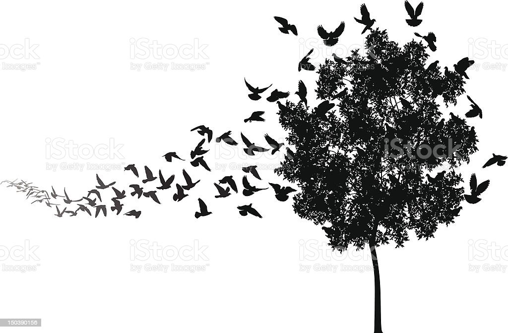 Home to roost vector art illustration