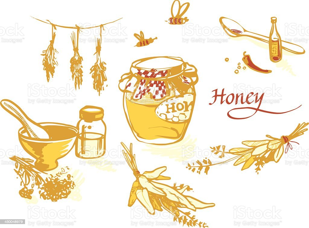 Honey and others natural medicine for the winter flue royalty-free stock vector art
