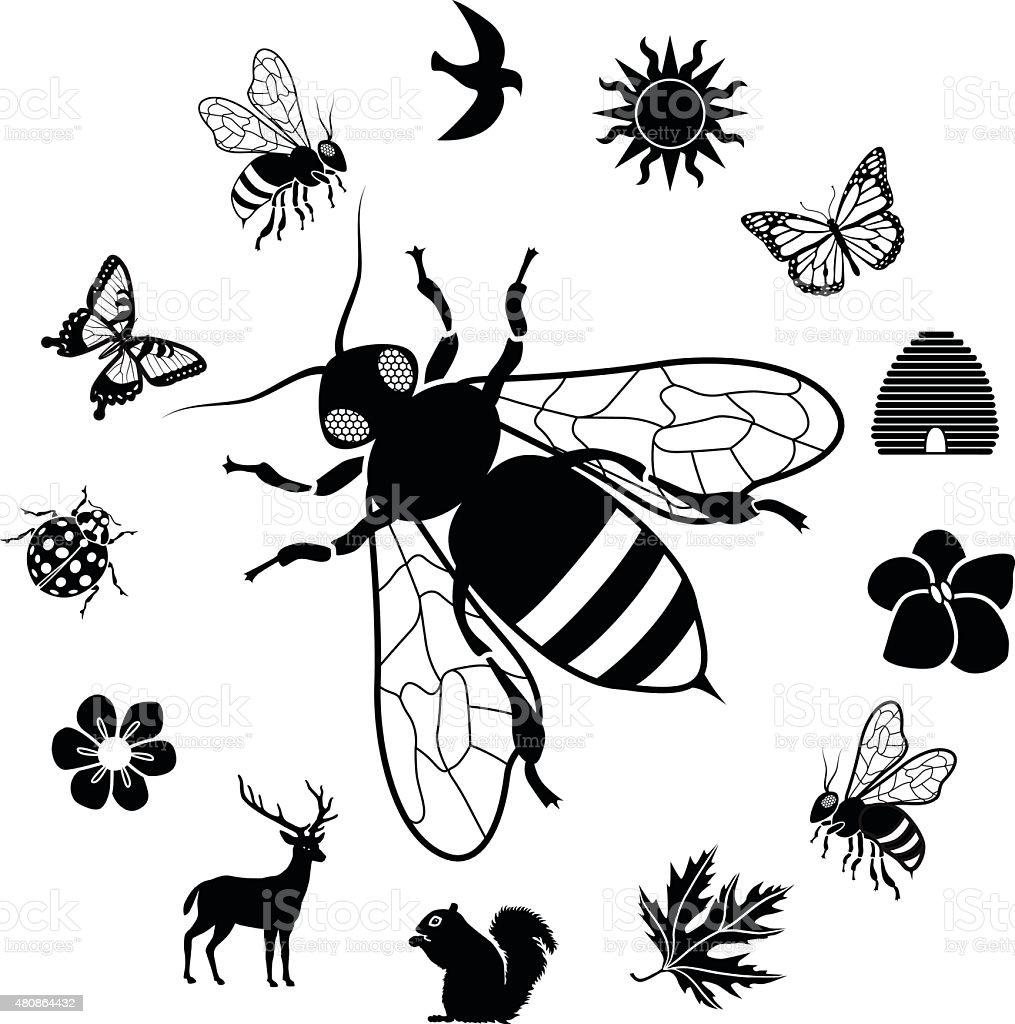honey bee surrounded by garden wildilfe icons circular border vector art illustration