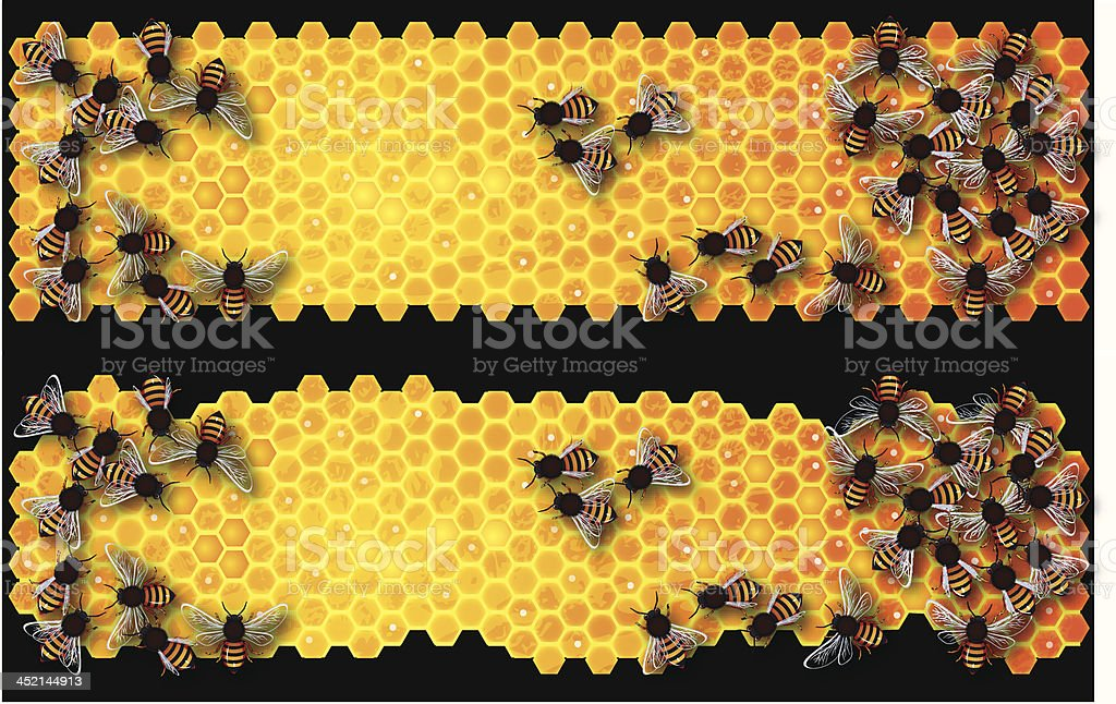 Honey Comb Banner vector art illustration