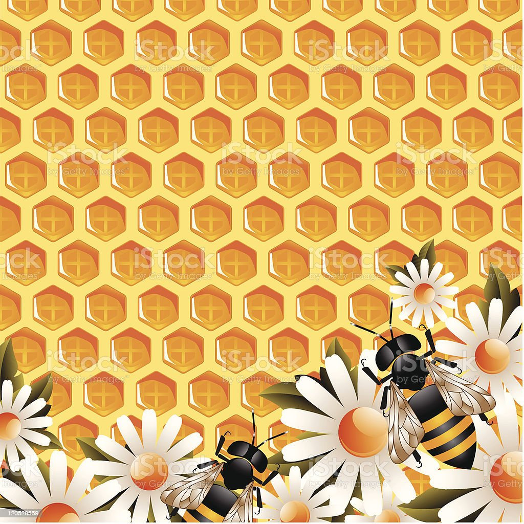 Honey Floral Background royalty-free stock vector art