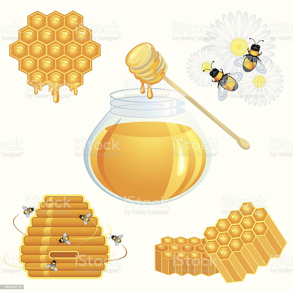 Honey icons set vector art illustration