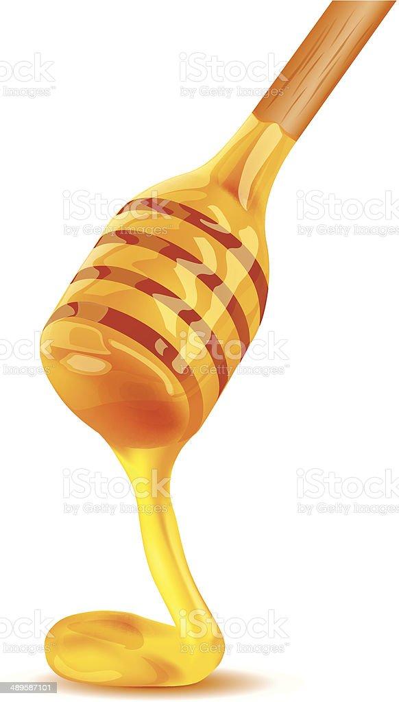 Honey vector art illustration