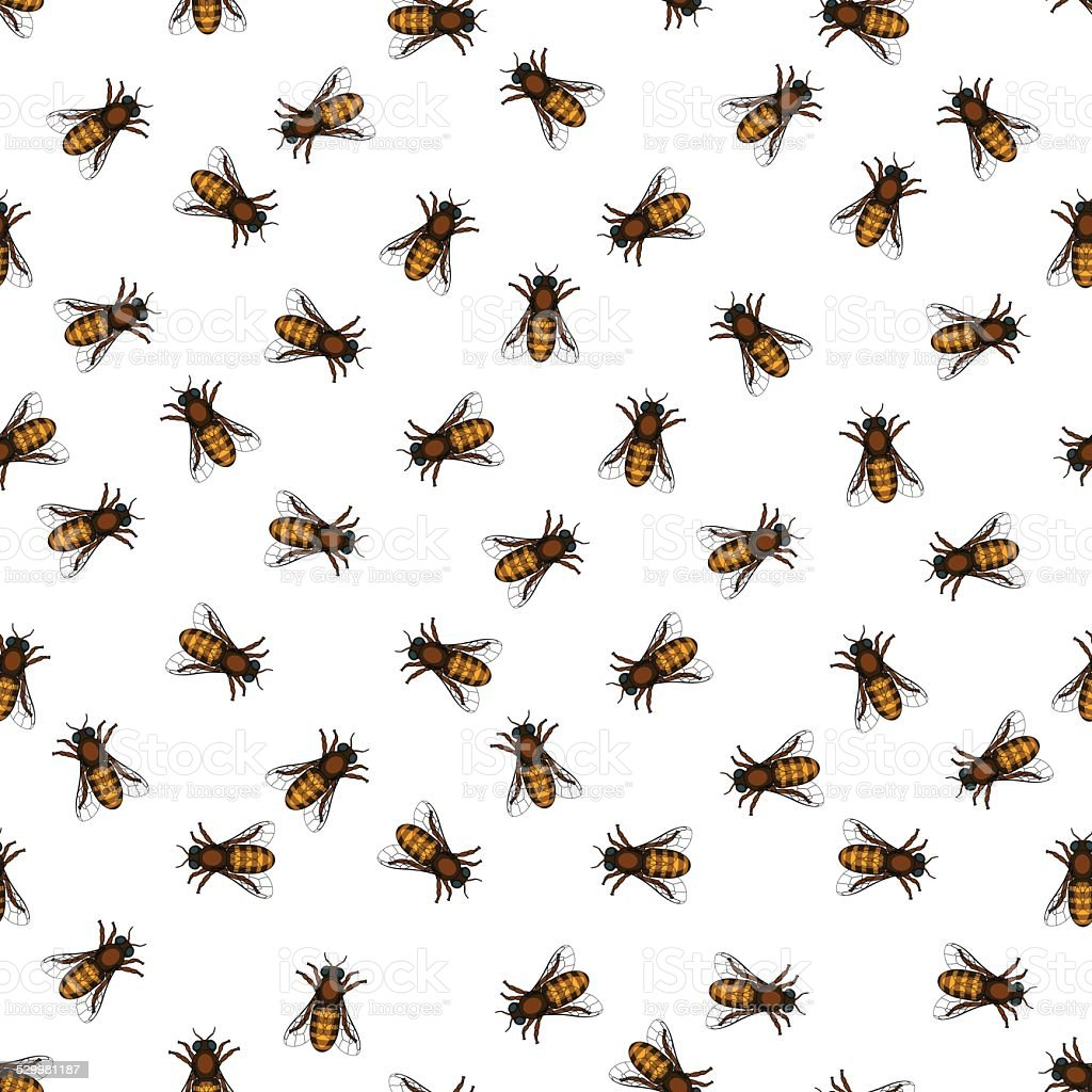 Honeybee pattern vector art illustration