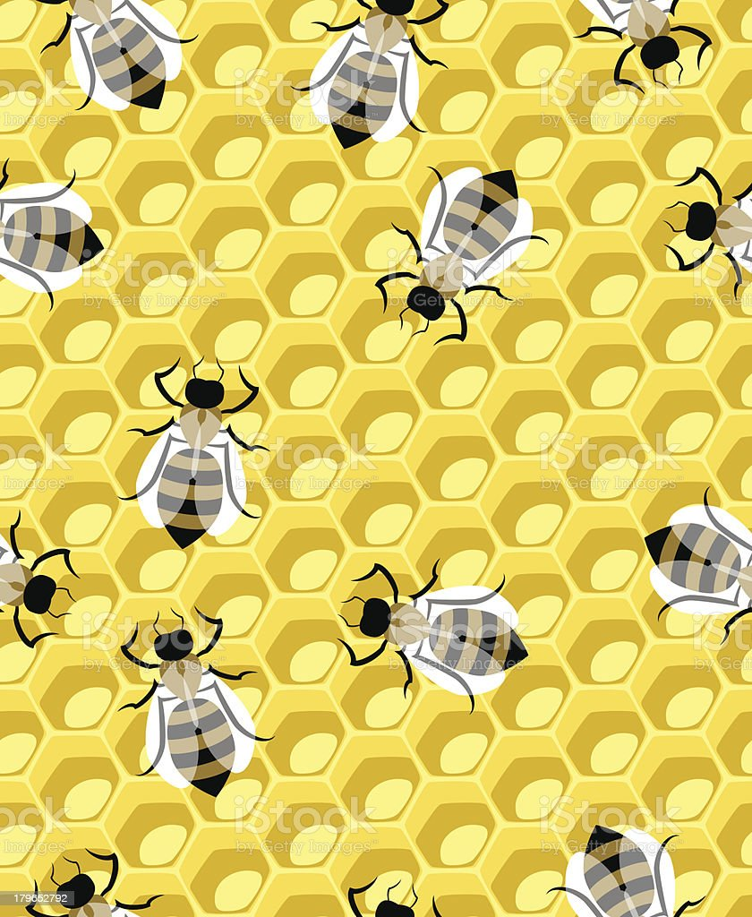 honeycomb and bee royalty-free stock vector art