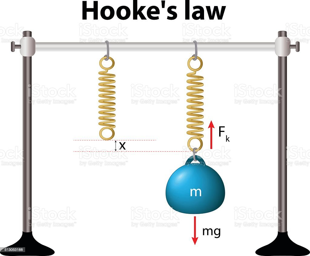 Hooke's law. the force is proportional to the extension vector art illustration