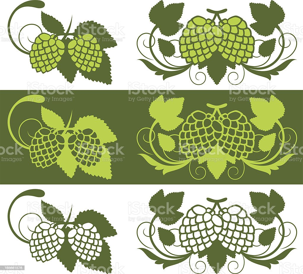 Hop plant design elements royalty-free stock vector art