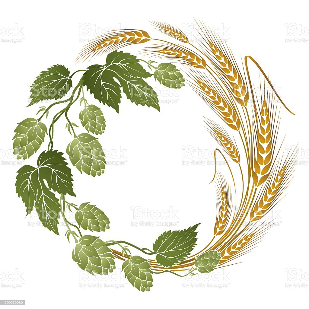 hops and wheat illustration for beer label vector art illustration