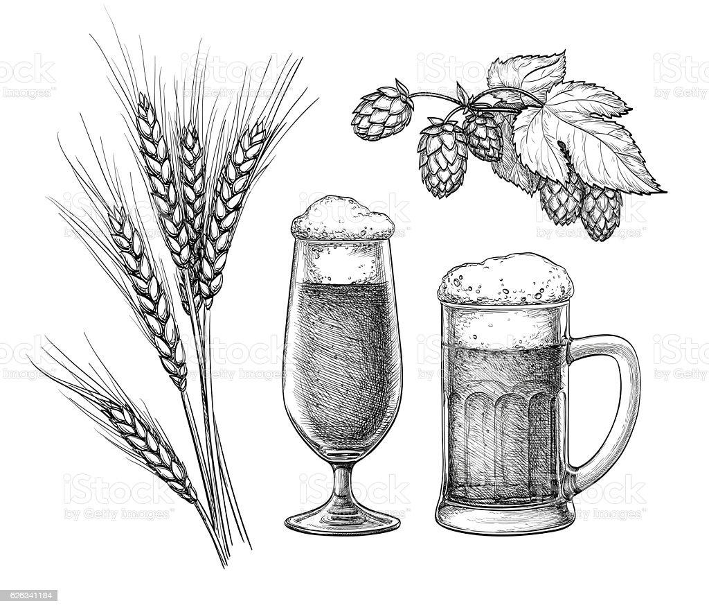 Hops, malt, beer glass and beer mug vector art illustration