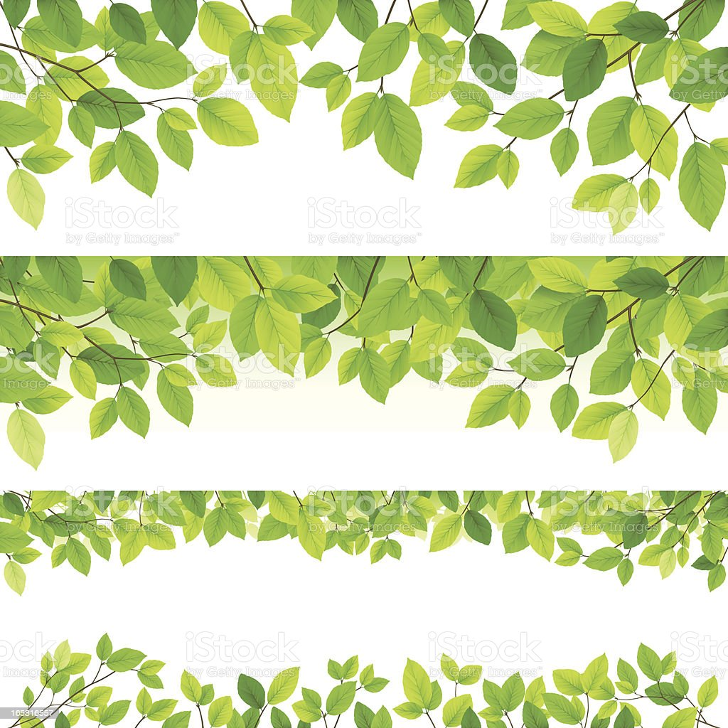 Horizontal leaf backgrounds vector art illustration