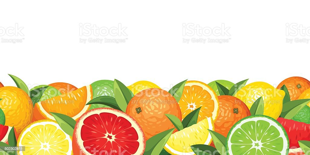 Horizontal seamless background with citrus fruits. Vector illustration. royalty-free stock vector art