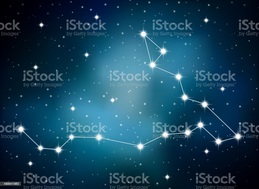 Horoscope zodiac sign of the pisces on the astrological space vector art illustration