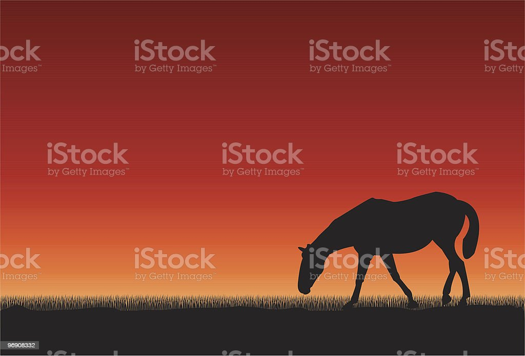 Horse at sunset royalty-free stock vector art