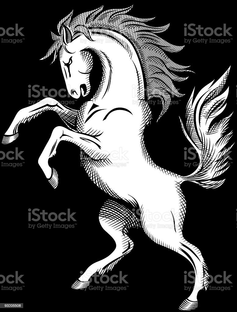 Horse Drawing vector art illustration