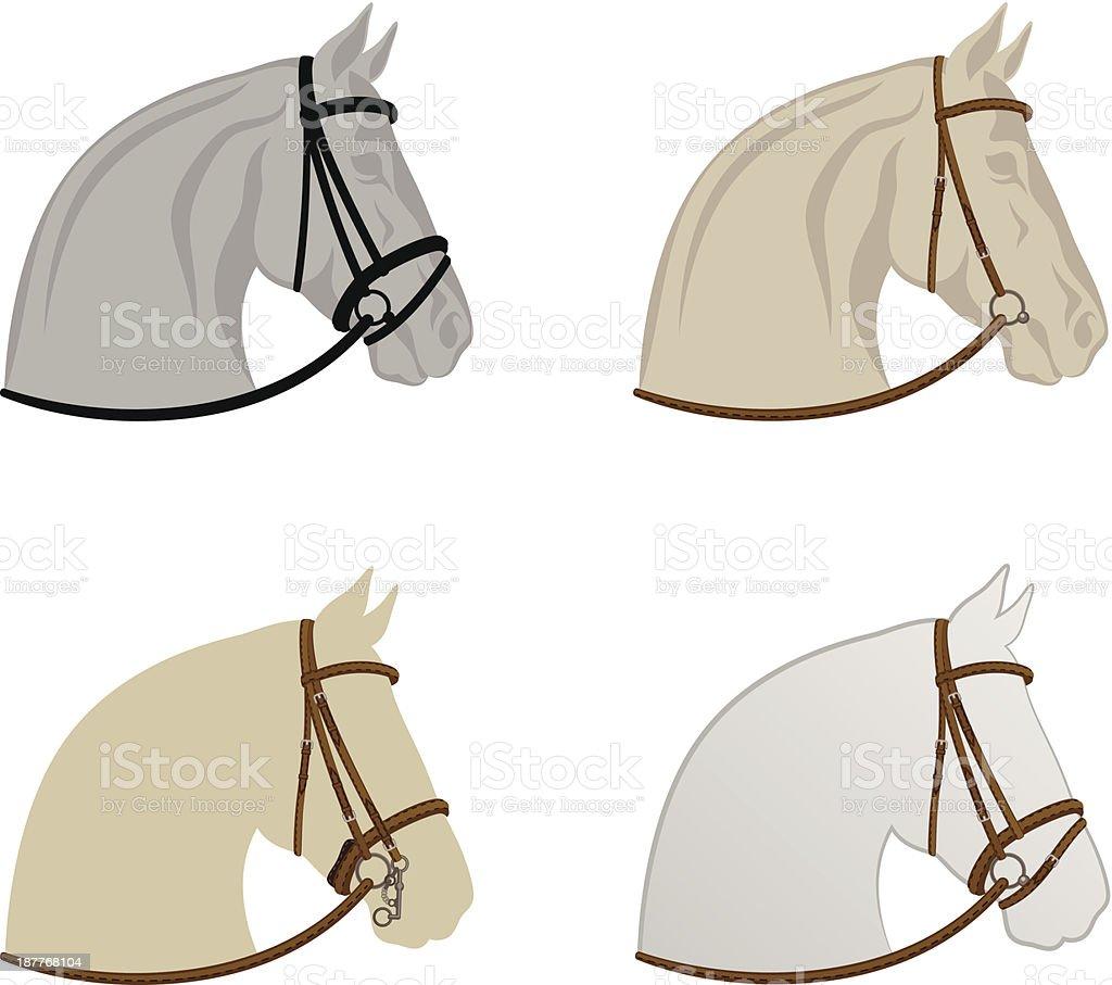 Horse harness vector art illustration