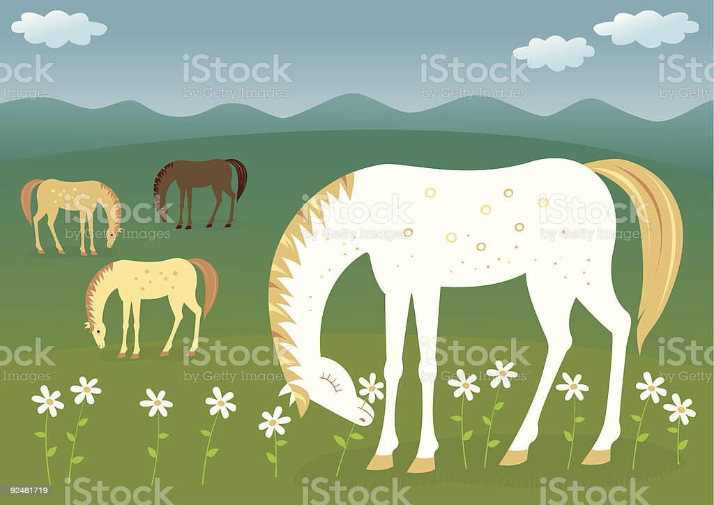 Horse on the meadow royalty-free stock vector art