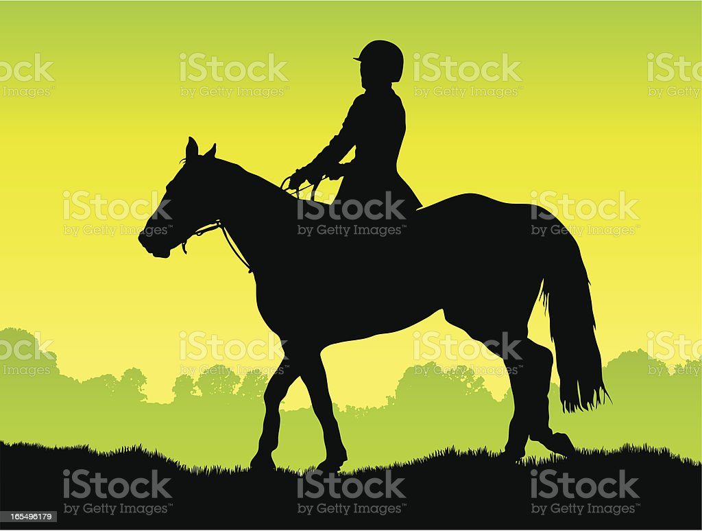 Horse rider silhouette in the country vector art illustration