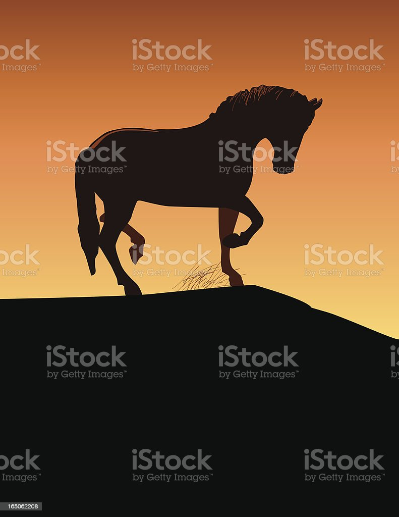 Horse vector art illustration