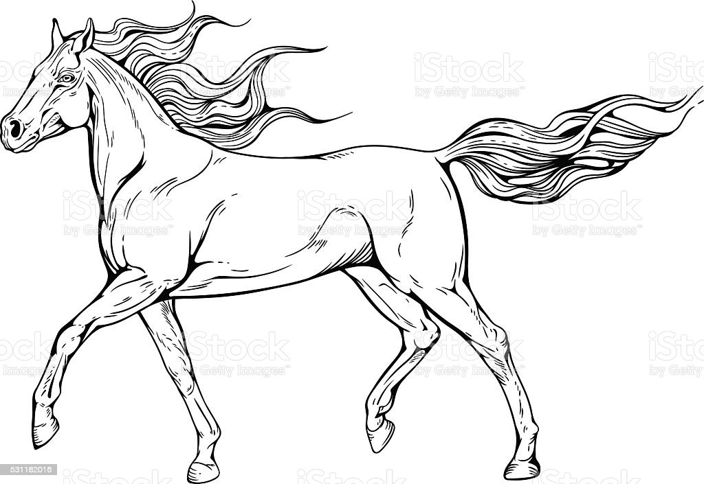 horse with waving mane and tail vector art illustration