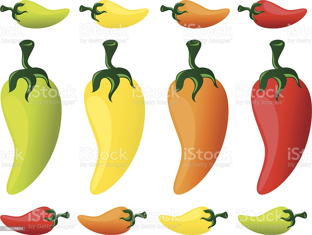Hot Chili Peppers vector art illustration