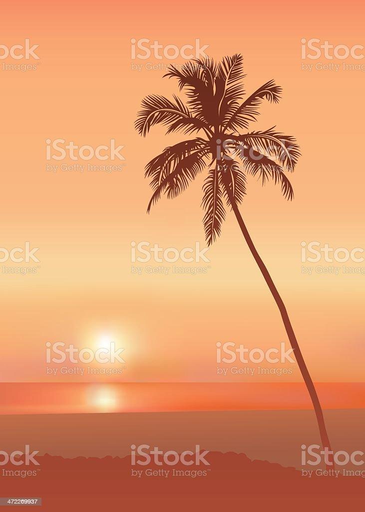 Hot coast (vector) vector art illustration