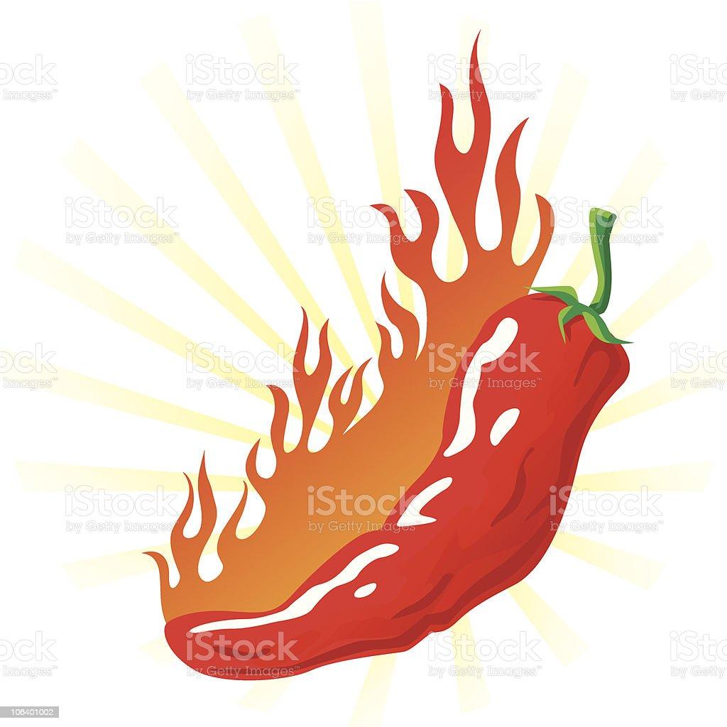 hot pepper vector art illustration