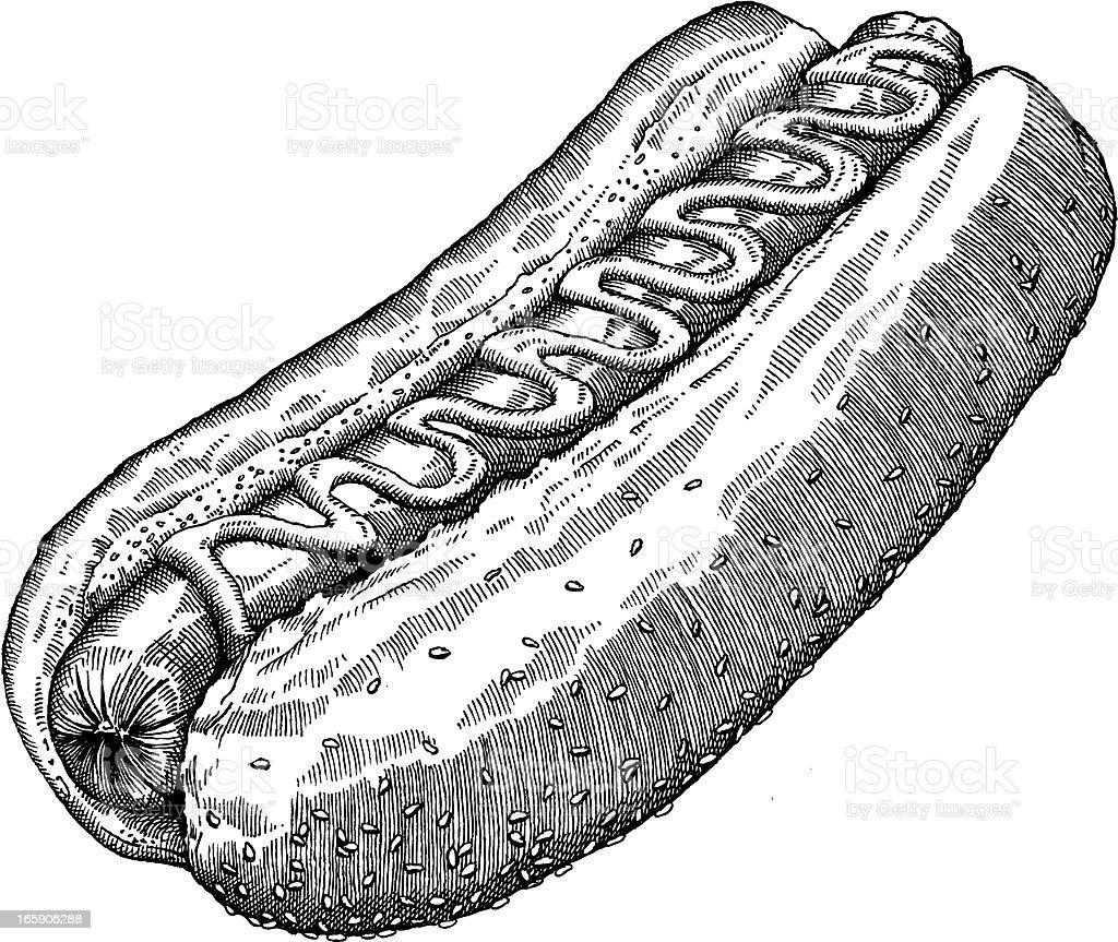 Hotdog Drawing royalty-free stock vector art