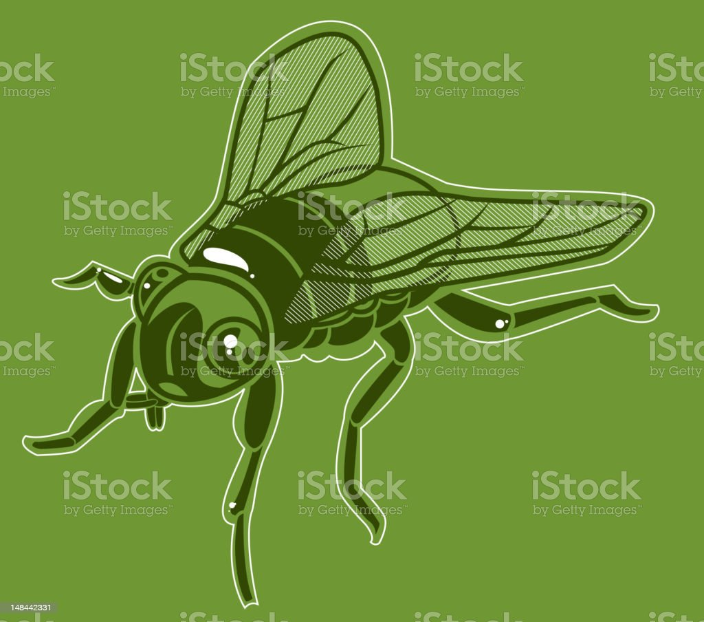 House Fly royalty-free stock vector art