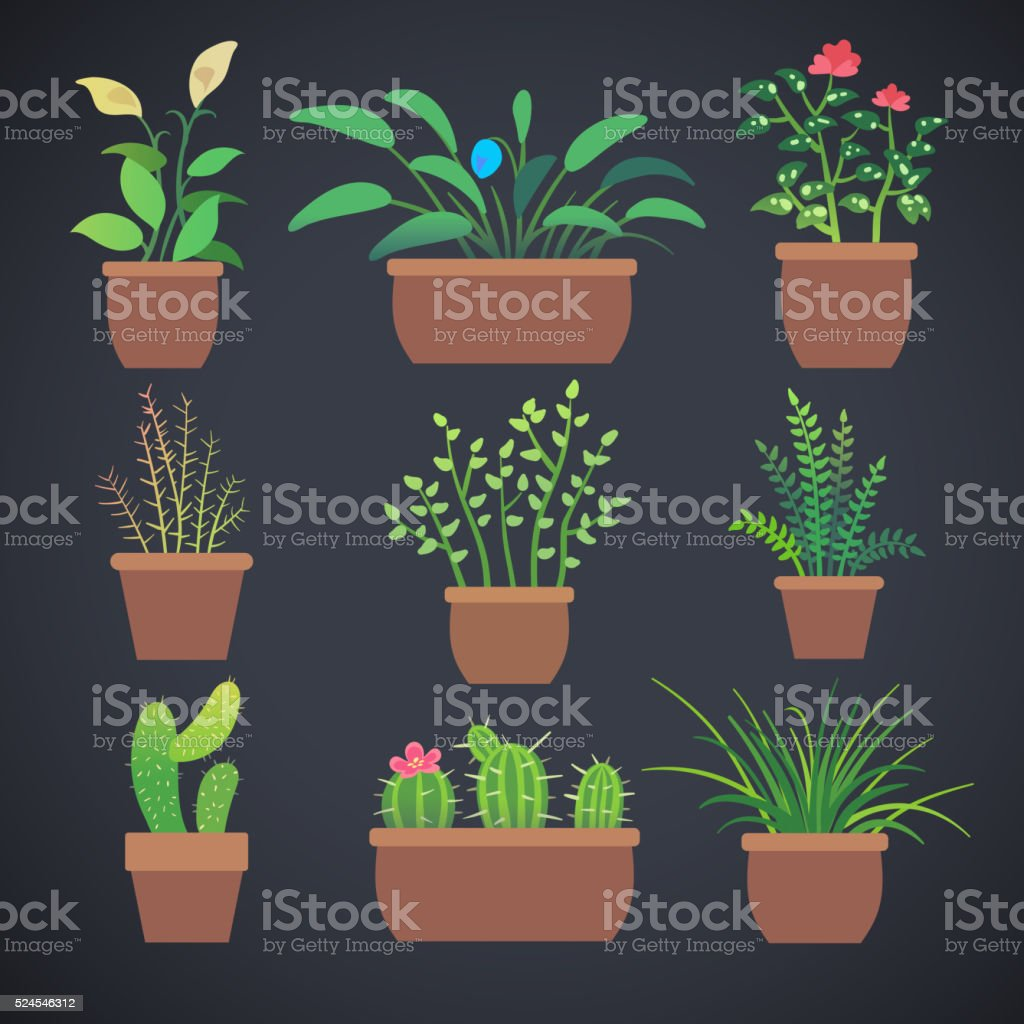 House plants, flowers in pots. Vector flat icons vector art illustration