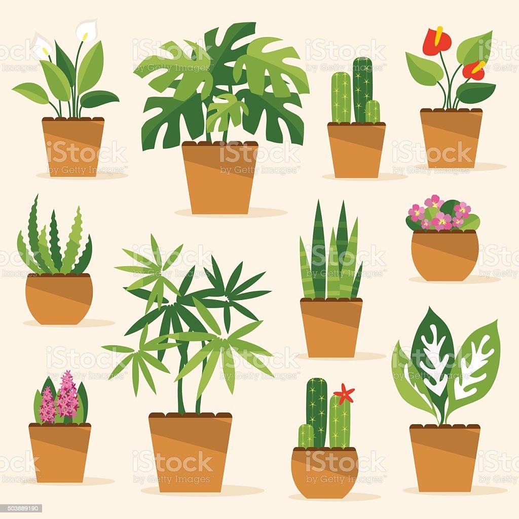 Houseplants. Vector Illustration vector art illustration