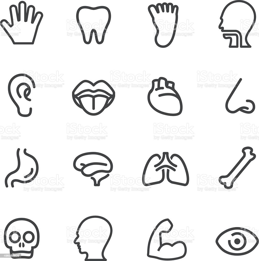 Human Anatomy Icons - Line Series vector art illustration