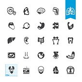 Human Anatomy related vector icons