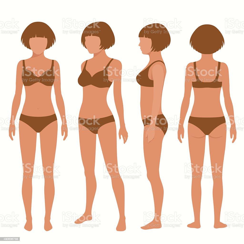 human body anatomy vector art illustration