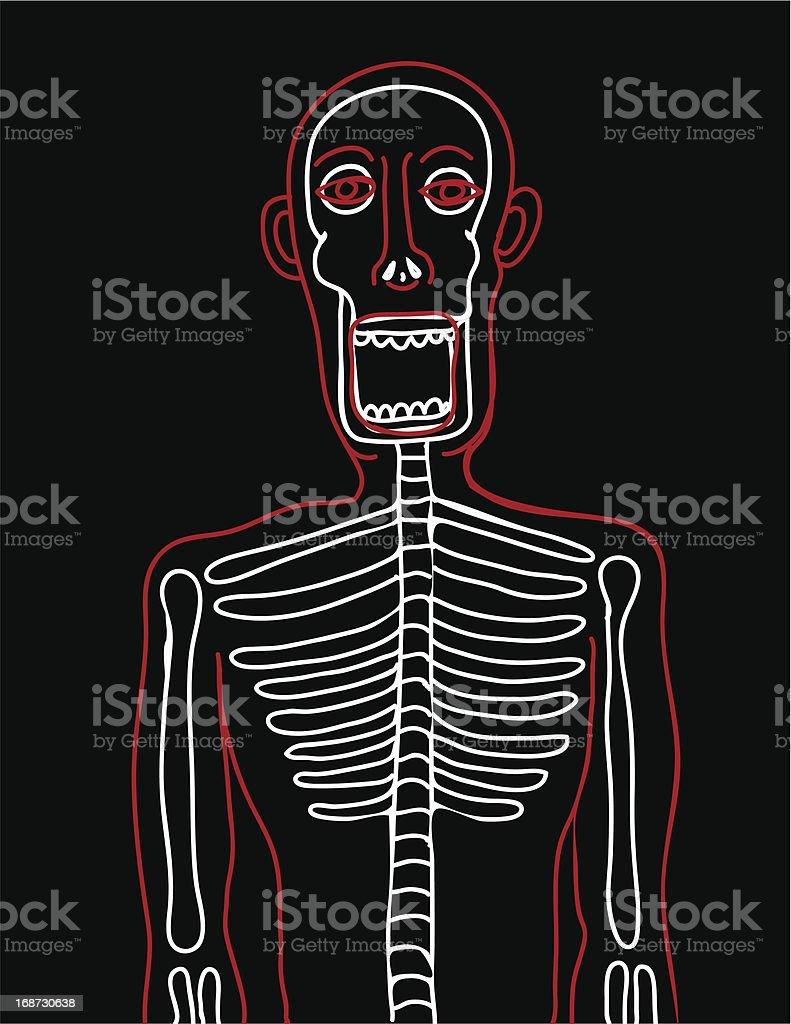 Human bones view royalty-free stock vector art