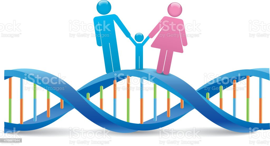 Human DNA vector art illustration