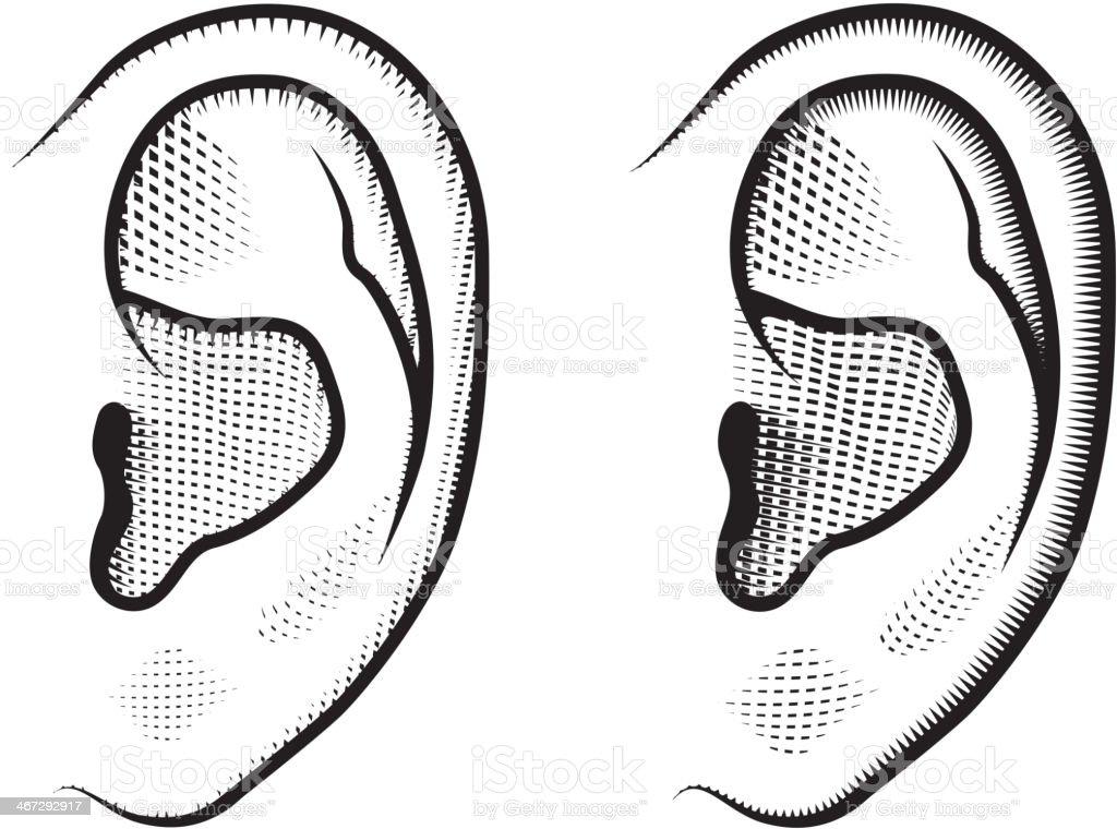 Human Ears Black & White Set vector art illustration