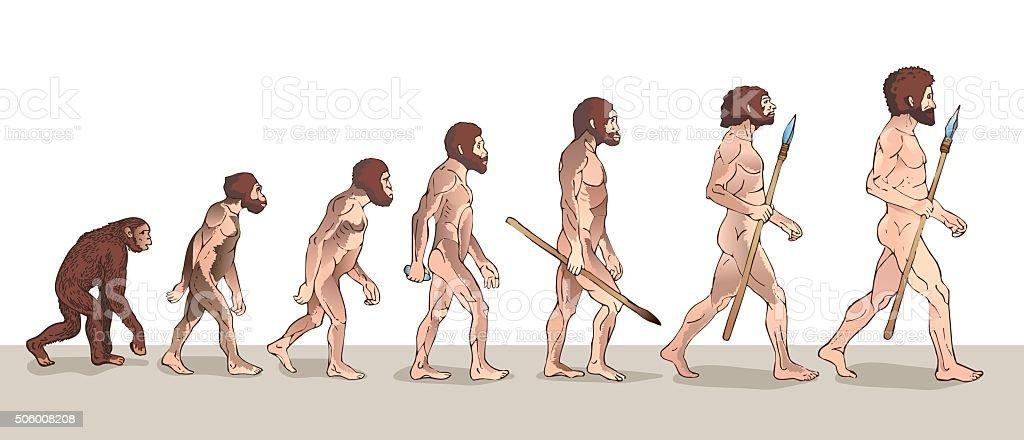 Human evolution. Historical illustrations. vector art illustration