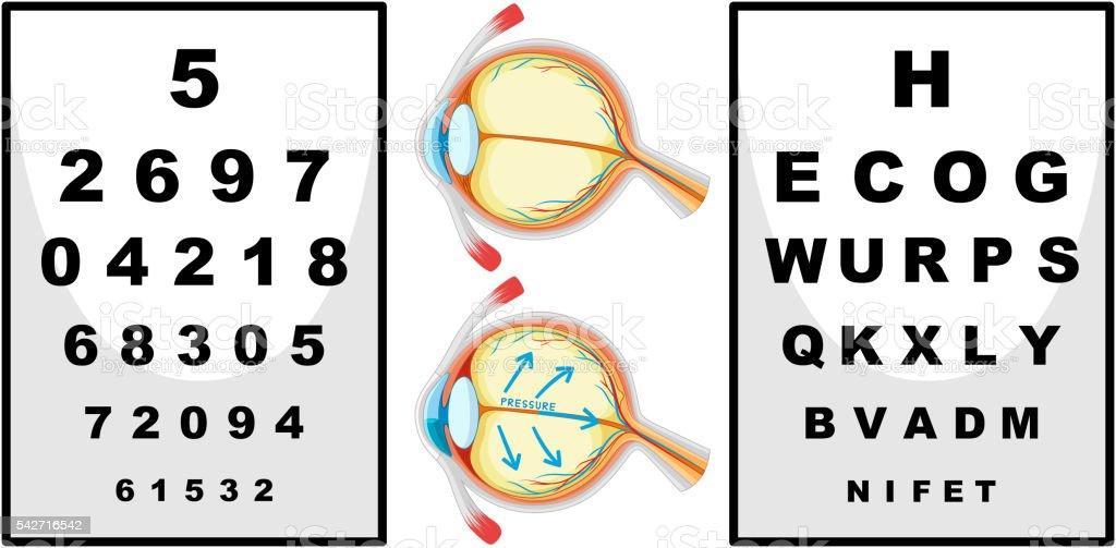 Human eyes and eyes checking boards vector art illustration
