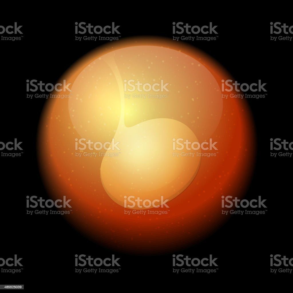 Human Fetus Inside the Womb. Vector royalty-free stock vector art