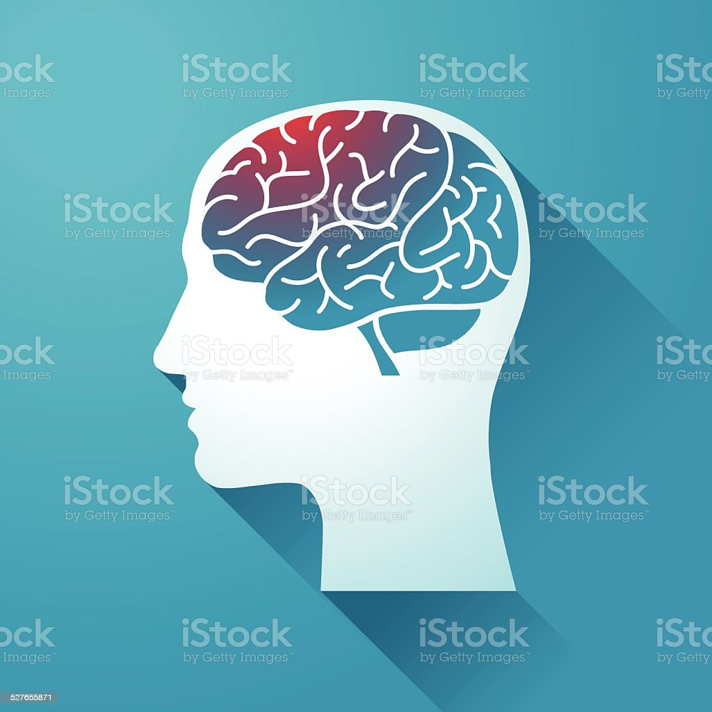 Human head and Brain vector art illustration