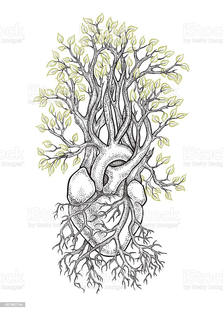 Human heart from which grows a tree vector art illustration