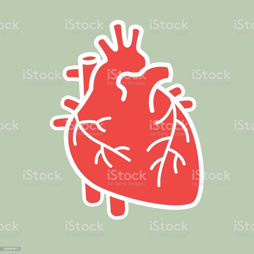Human heart vector vector art illustration