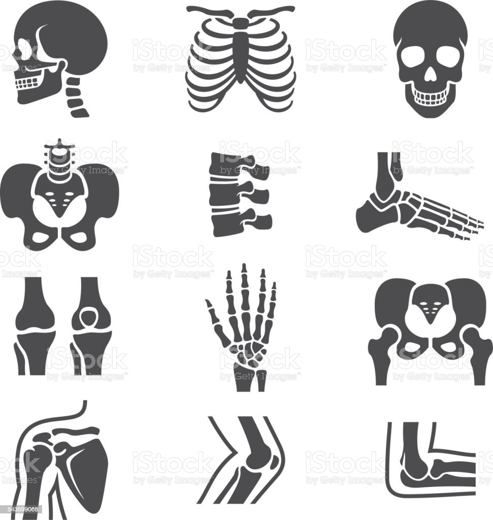 Human Joints Icons Set vector art illustration