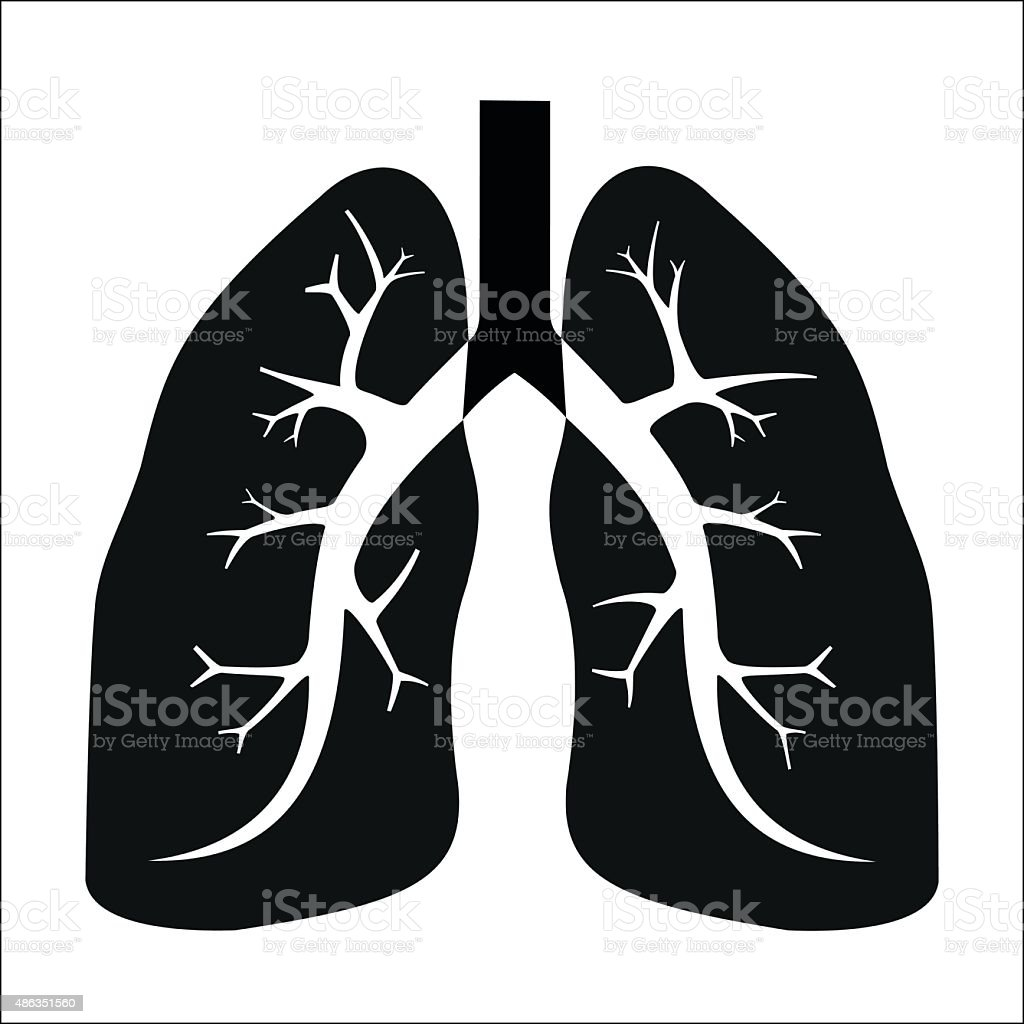Human lung royalty-free stock vector art