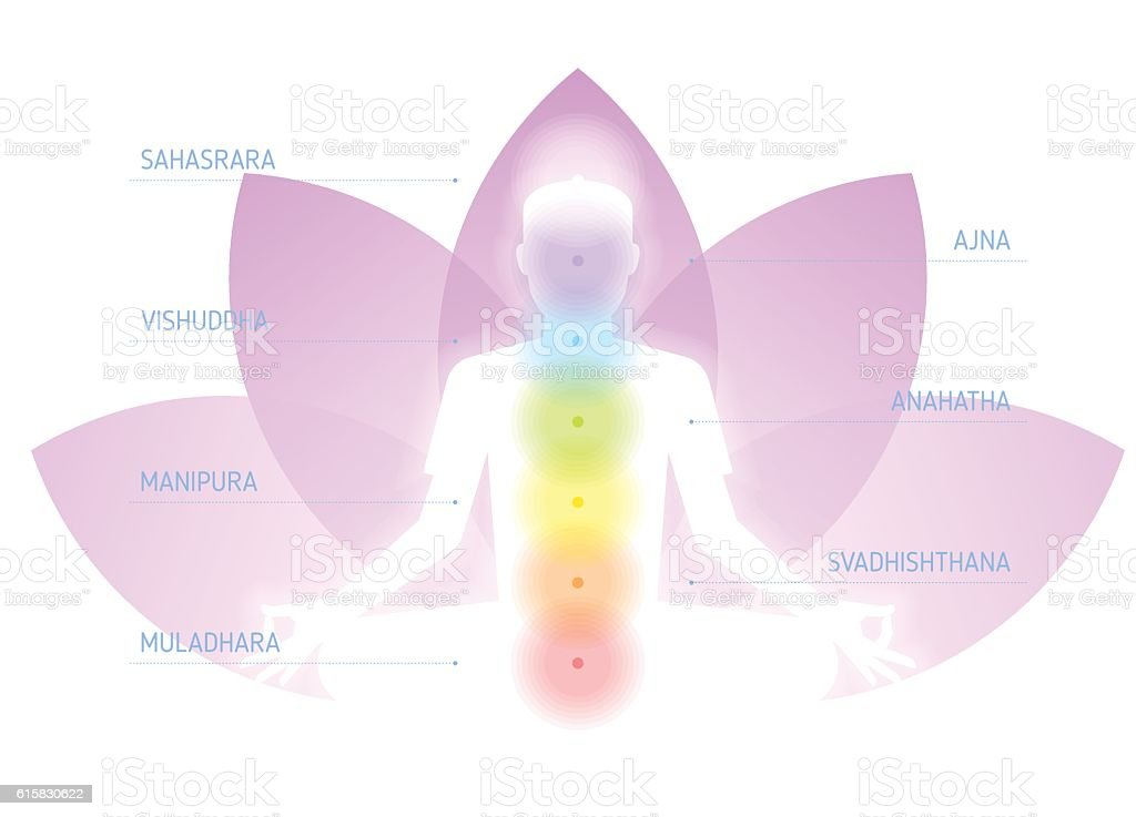 Human meditating silhouette with chakras on the lotus flower background. vector art illustration