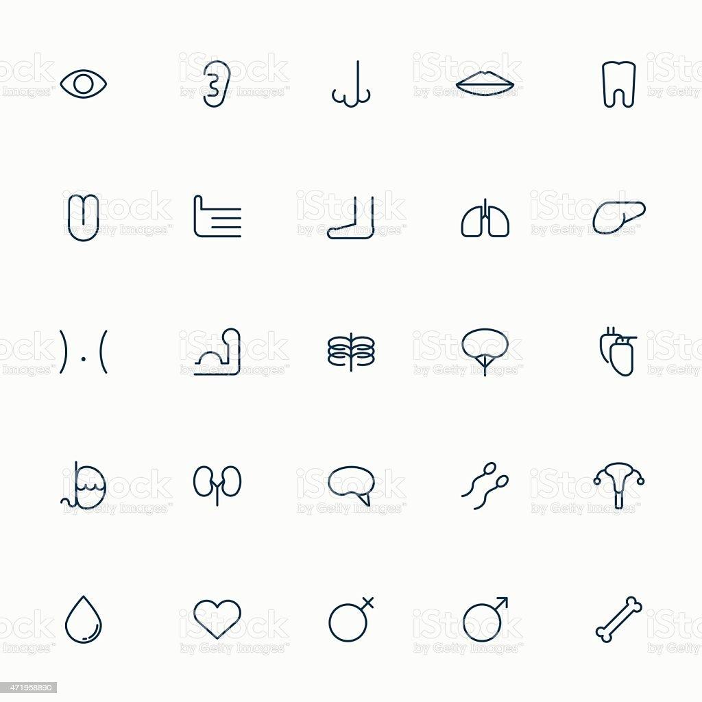 25 human organ minimal line icons vector art illustration